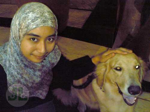 Bahaya liur anjing air liur anjing sangat berbahaya bagi kesehatan